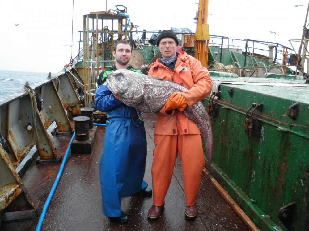 A success of deepwater fishing